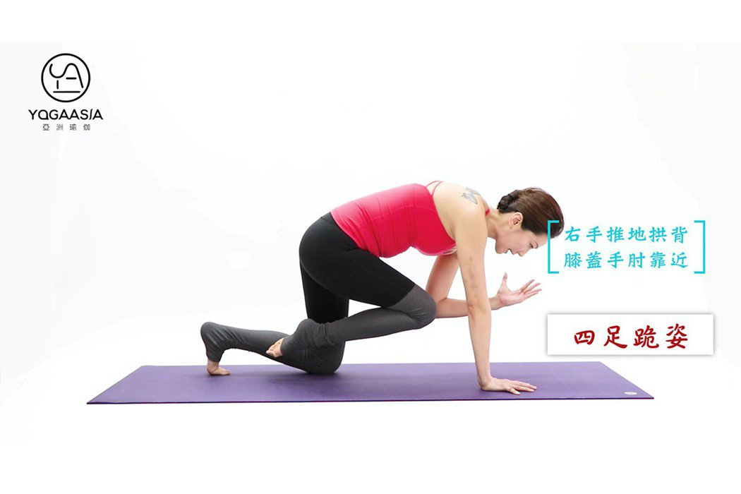 跪姿核心。 圖片提供/亞洲瑜伽