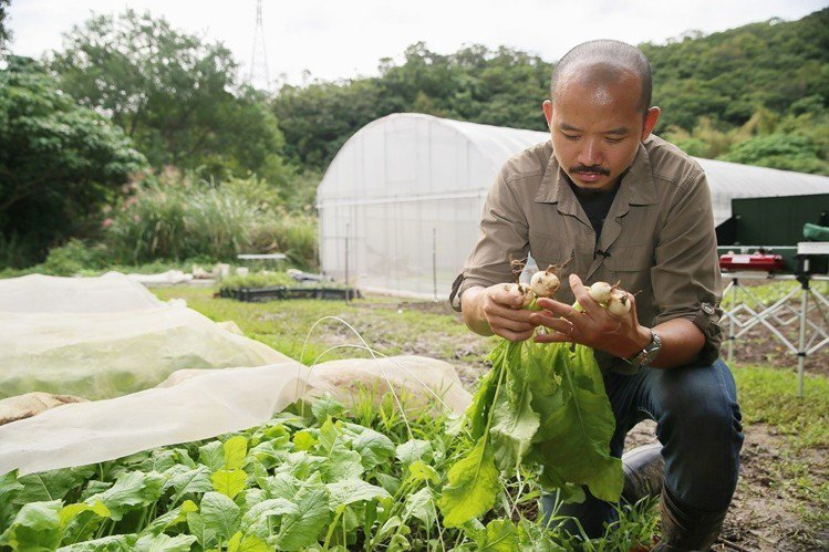 種菜是可以達到最新鮮、最好吃,可以產地直送的方法。圖/記者陳柏亨攝影