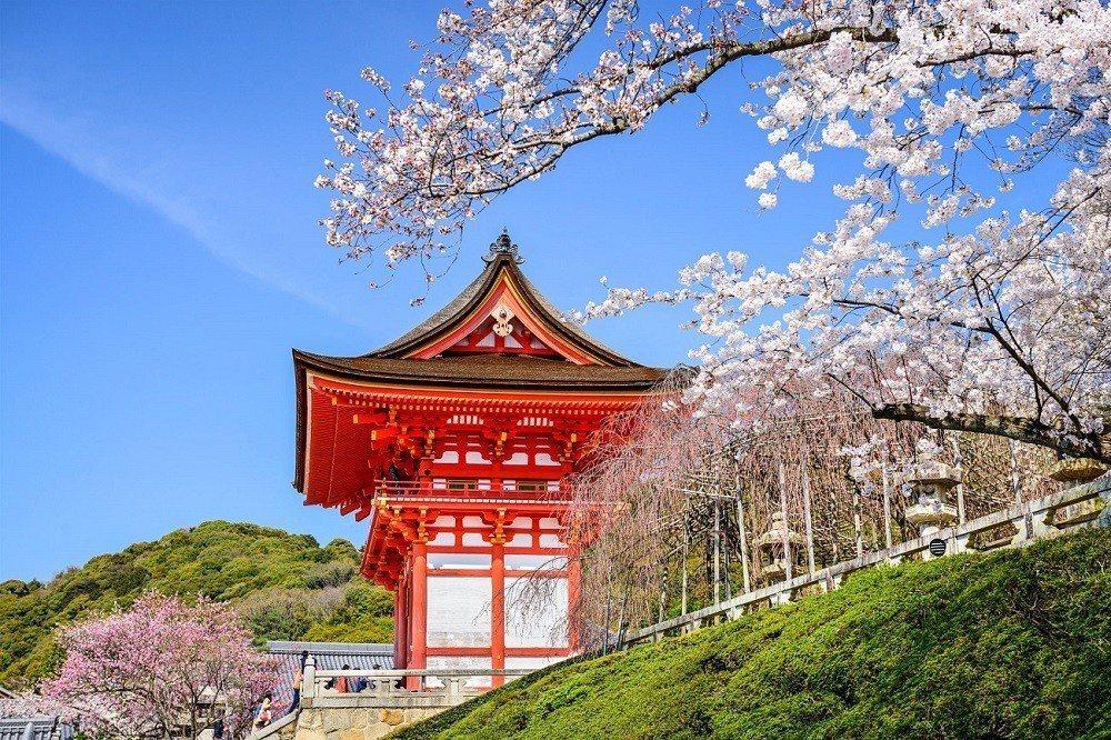 寺廟與櫻,是當然絕配。圖/Hotels.com提供