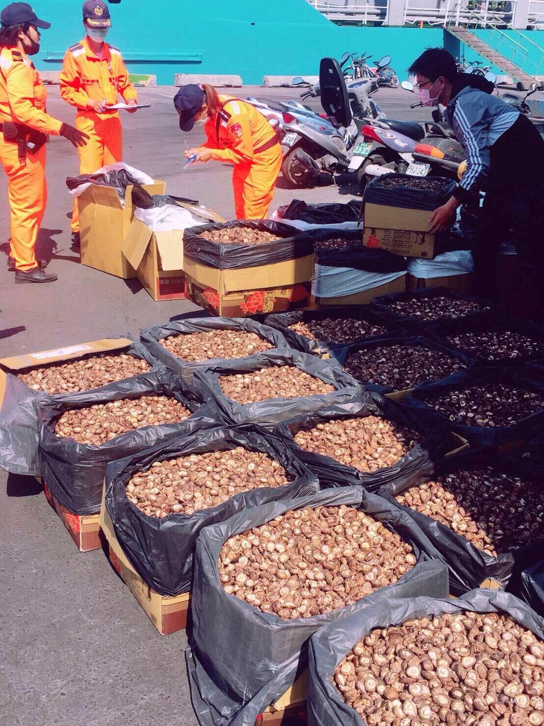 海巡人員今天在高雄港查獲貨櫃走私大陸香菇。記者林保光/翻攝