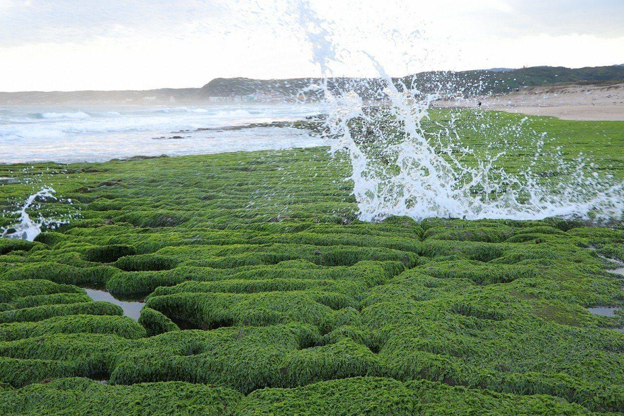 優雅的線條與青翠的色澤,讓老梅石槽成為許多攝影師的必拍景點。圖/網友邱子桓提供
