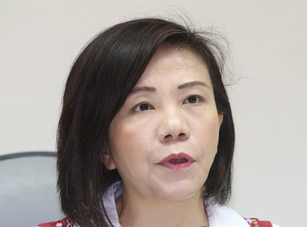 民進黨立委葉宜津將廢注音當成參選台南市長的政見,強調提出廢除ㄅㄆㄇㄈ是「不計毀譽...