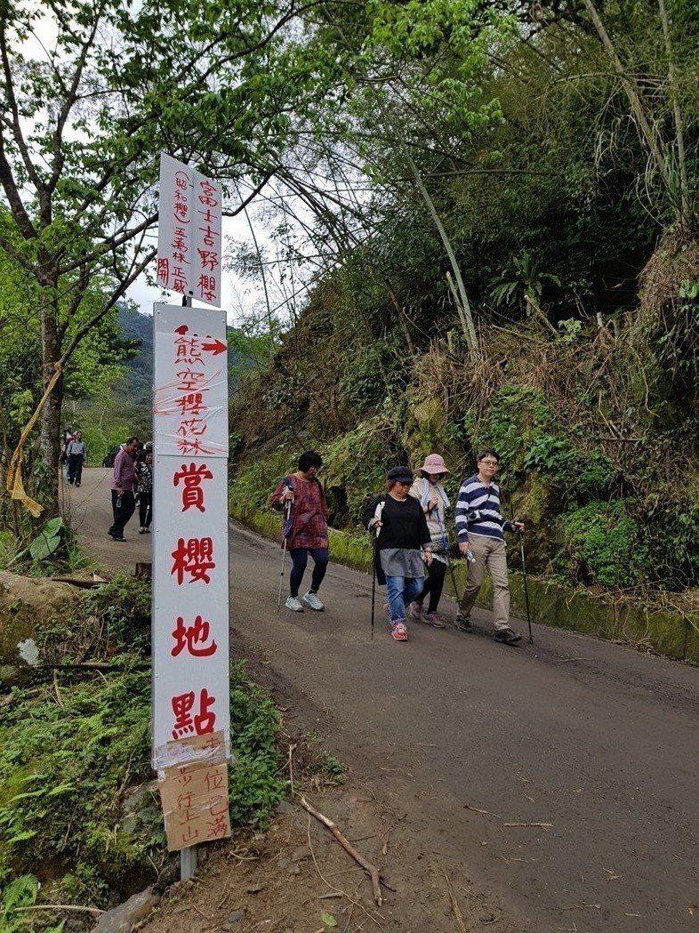 熊空櫻花林的入口狹窄,宜小心駕駛。 朱家瑩/攝影