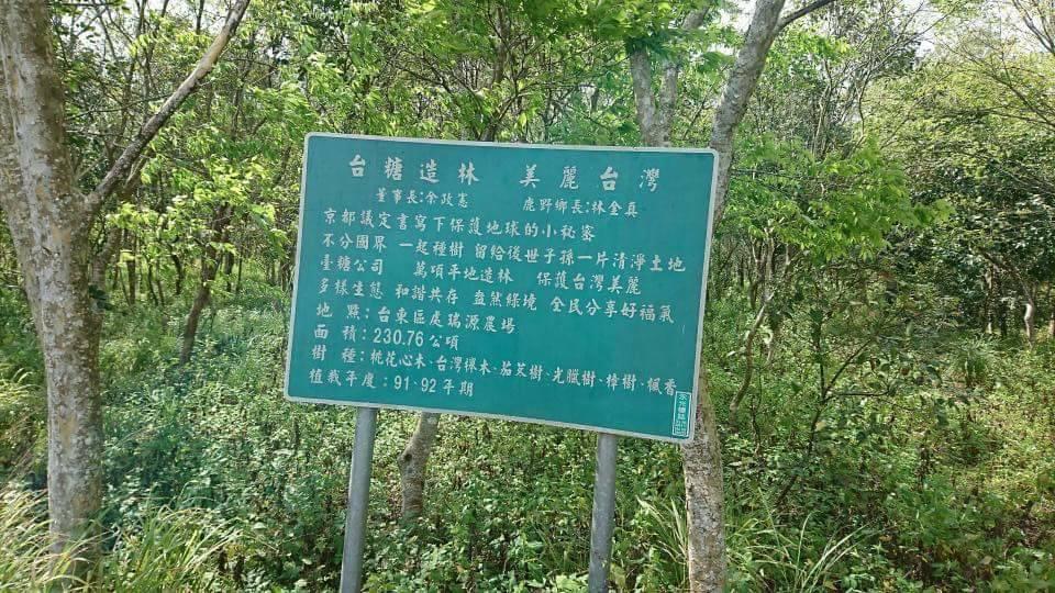 對比台東鹿野瑞源農場外環保林園大道上由台糖前董事長余政憲署名的「台糖造林,美麗台...