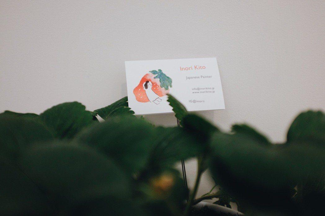 名片夾在草莓盆栽裡,鬼頭祈真的很愛草莓哪。記者沈佩臻/攝影