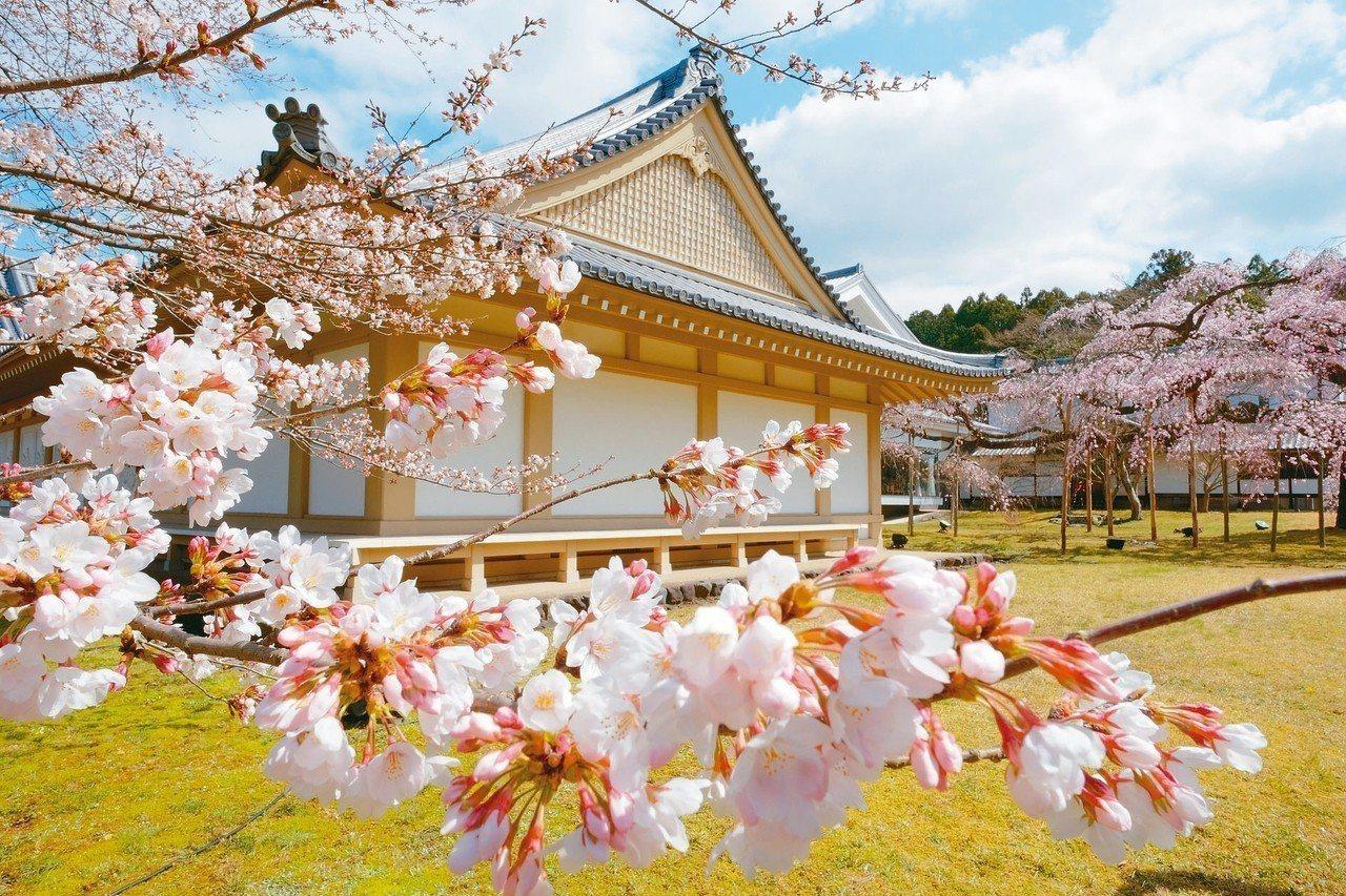 醍醐寺又被稱為日本最美麗的寺院。 圖/有行旅提供