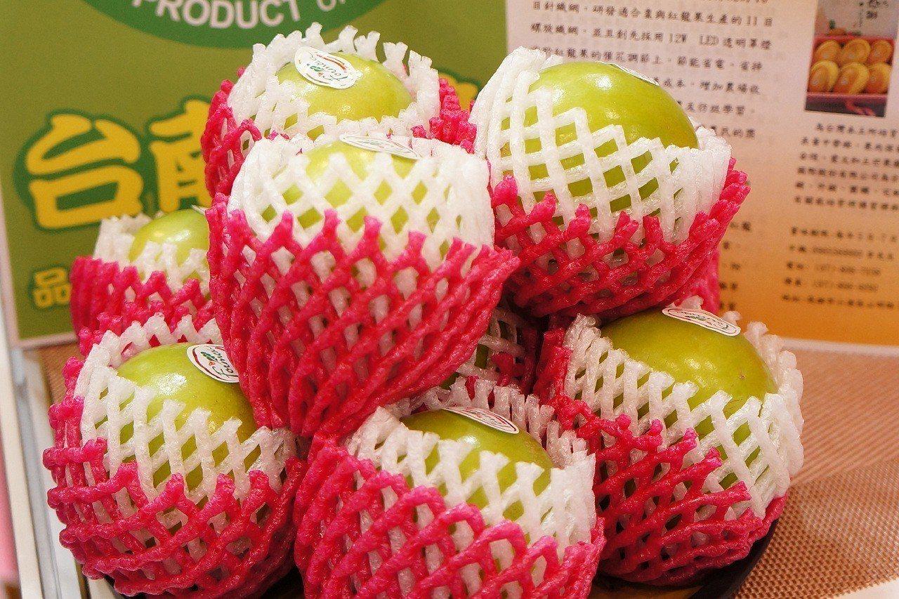 首批進軍日本的台南蜜棗6日起在東京國際食品展中亮相,台南市政府希望能一舉進攻日本...