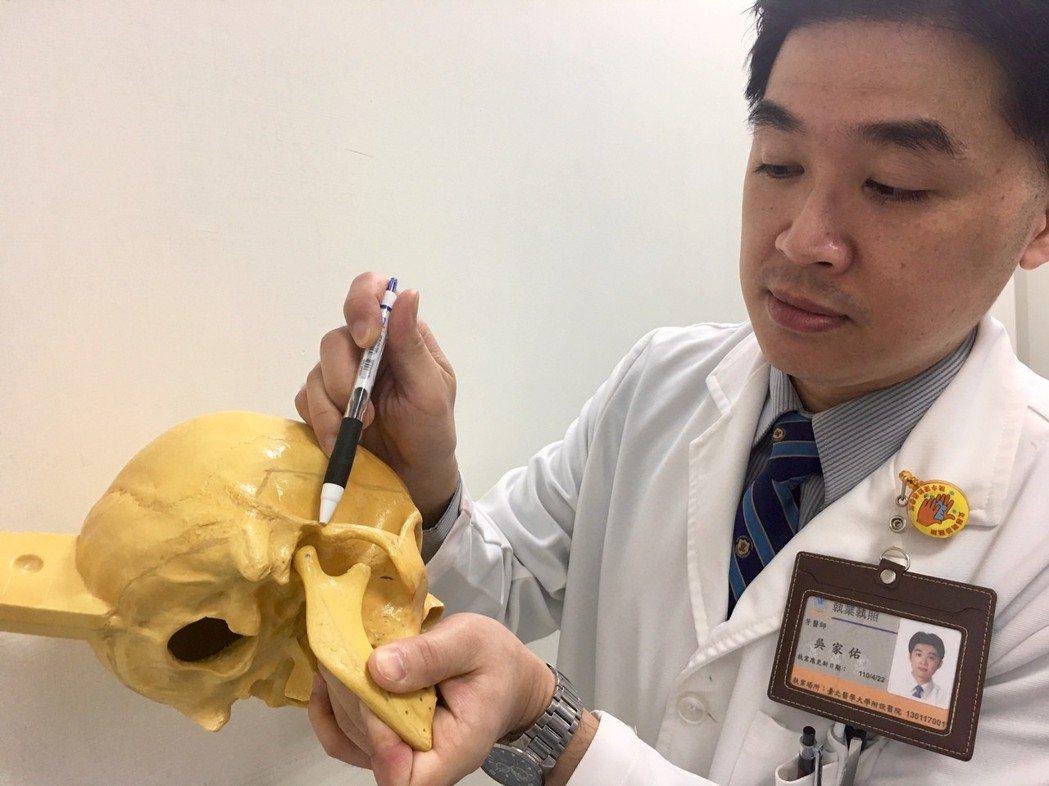 顳顎關節位於外耳道前緣、耳珠前方,連結顳骨和下顎骨,讓人能開口講話、咬東西、吞口...