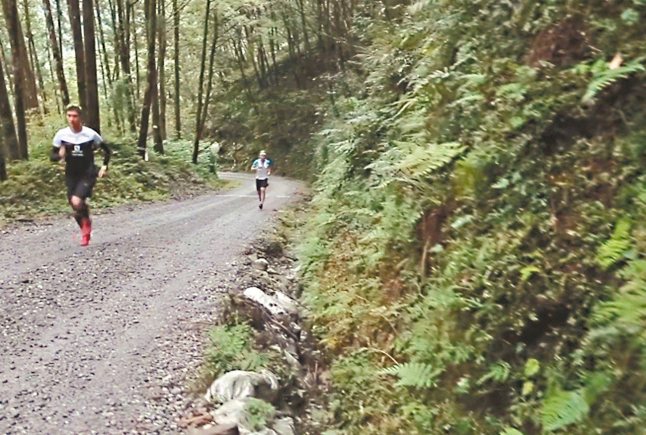 宜蘭縣棲蘭山100線林道3月10日將舉辦越野馬拉松,主辦單位為此還訂定嚴格的生態...