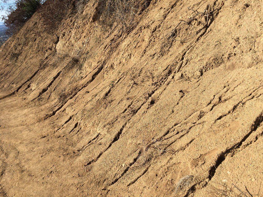 今年南加州遭遇幾十年來最乾燥少雨的狀態,洛杉磯市區連續十個月沒有達到平均降雨量0...