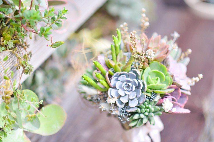 多肉花束可將植物的生命延續。圖/有肉 Succulent & Gift提供