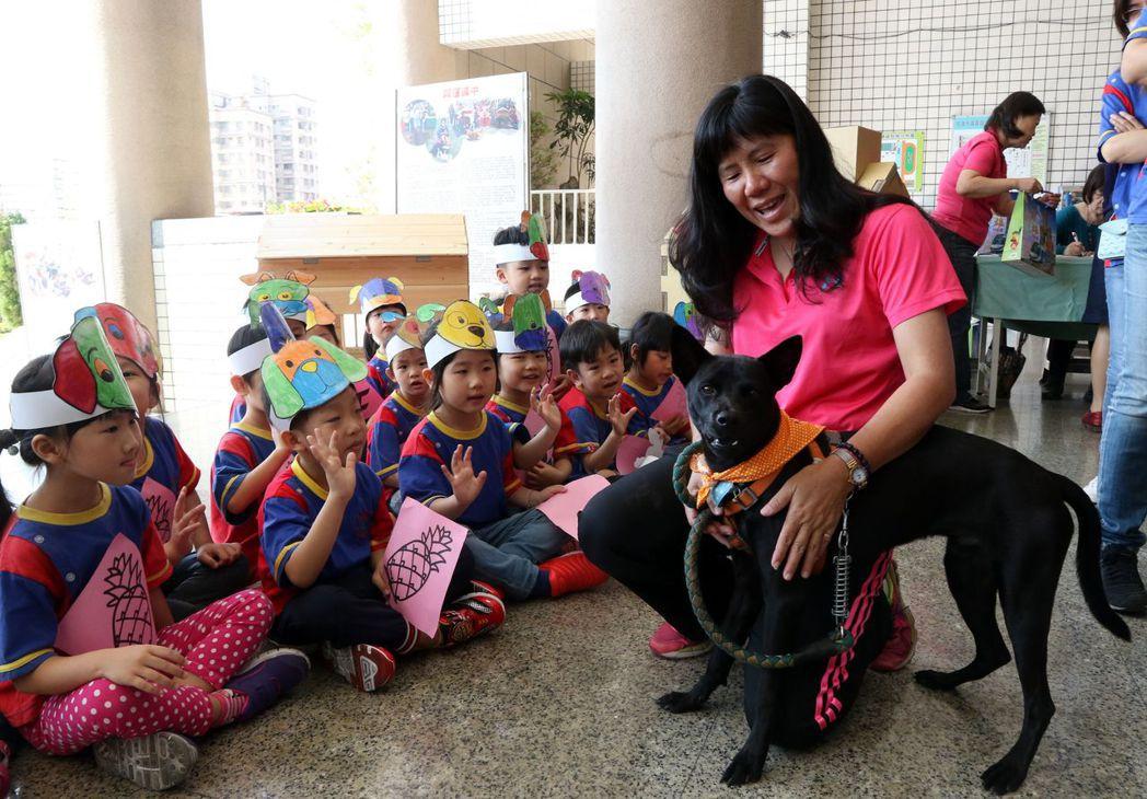 國昌國中「Golden」是正港台灣犬,學校想把牠培養成書僮犬。 記者徐如宜/攝影