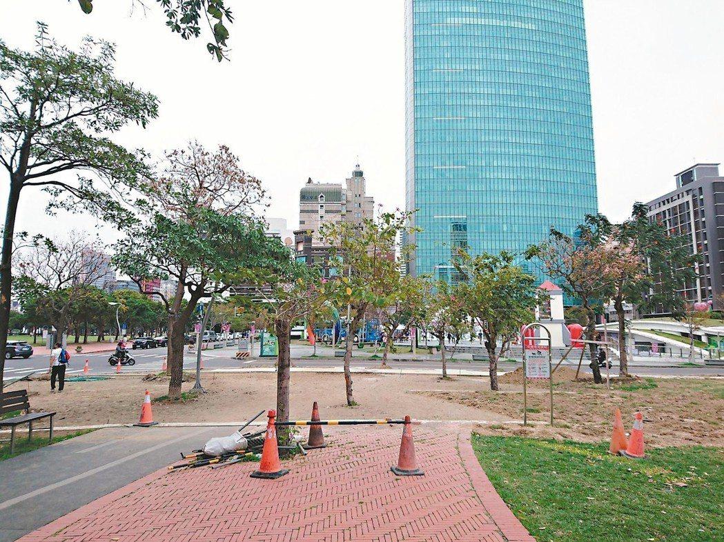 中市進行「台中之心」計畫,開始移除國美館前、草悟道、美術園道的黑板樹。 記者喻文...