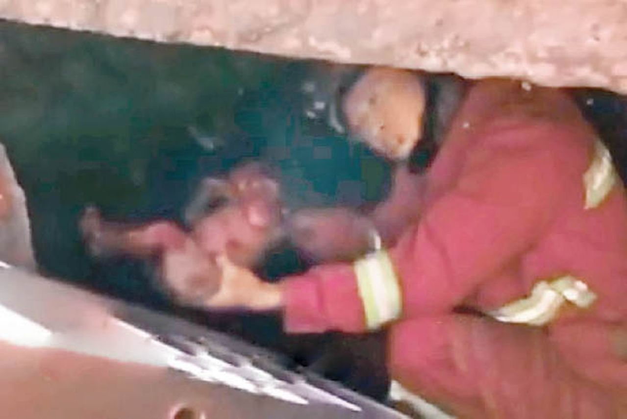 婦如廁不知誕嬰 消防糞池救回