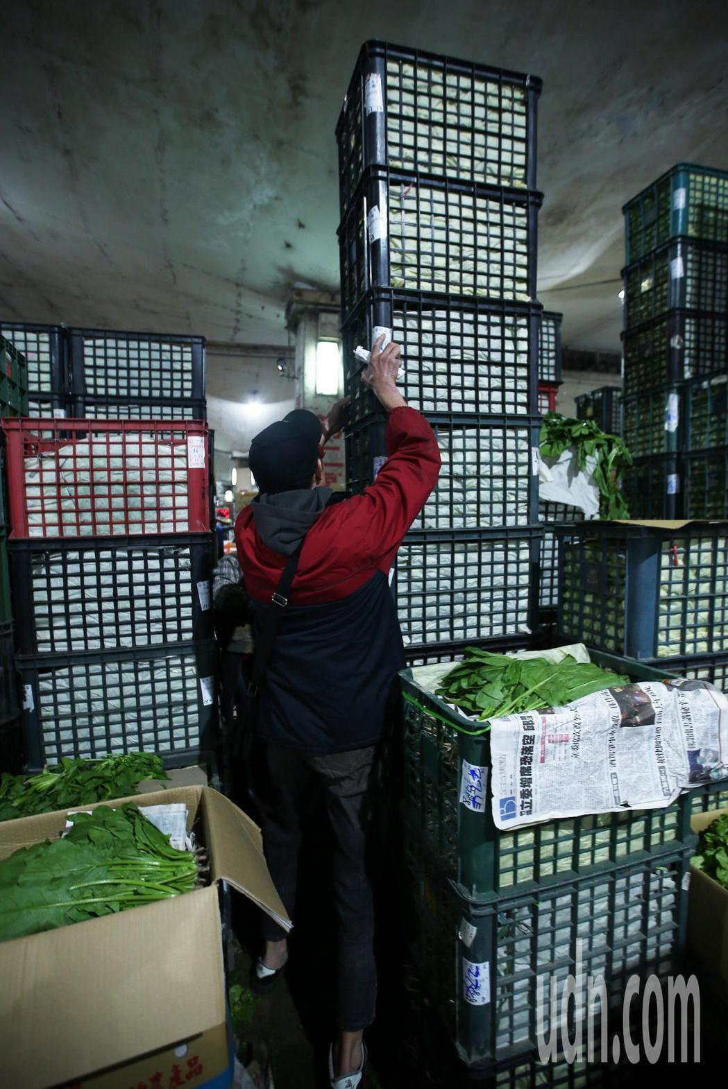 經過三天休市後,台北果菜批發市場今天凌晨恢復正常交易,從各地送來的葉菜堆積如山。...