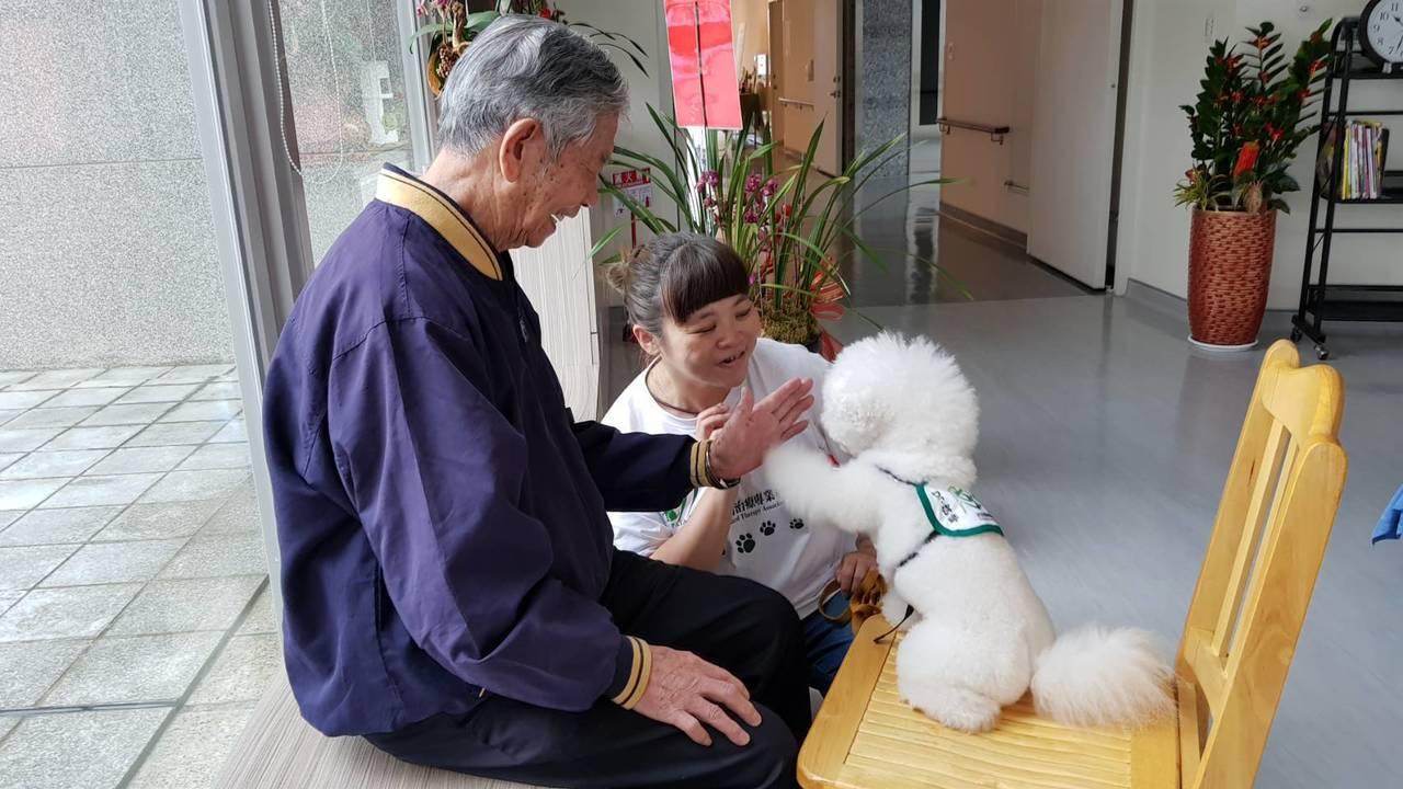 南投縣埔里基督教醫院今年將開辦「狗醫師伴老」志工訓練,今找來狗醫師到院陪伴長者。...