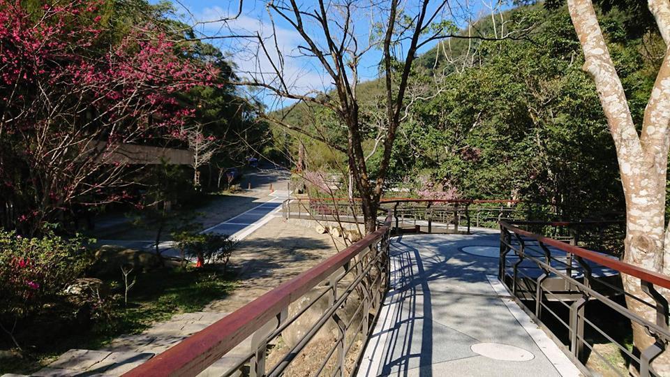 無障礙賞螢步道約400公尺,方便身心障礙和高齡遊客欣賞山林美景。圖/阿里山管理處...