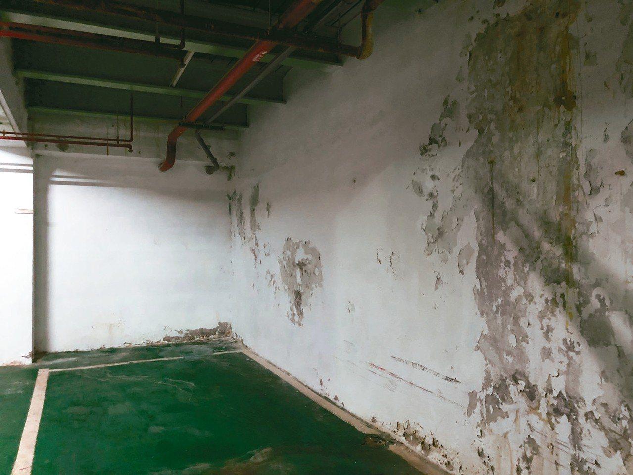 北市客家文化主題公園漏水、壁癌情況嚴重。 記者邱瓊玉/攝影