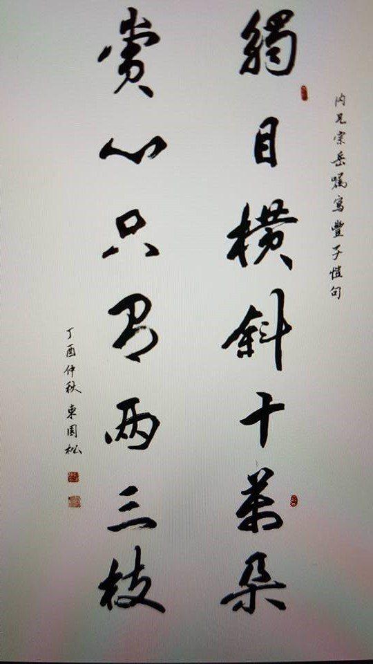 「觸目橫斜千萬朵,賞心只有兩三枝」彭淮棟的書法作品。記者王彩鸝/翻攝