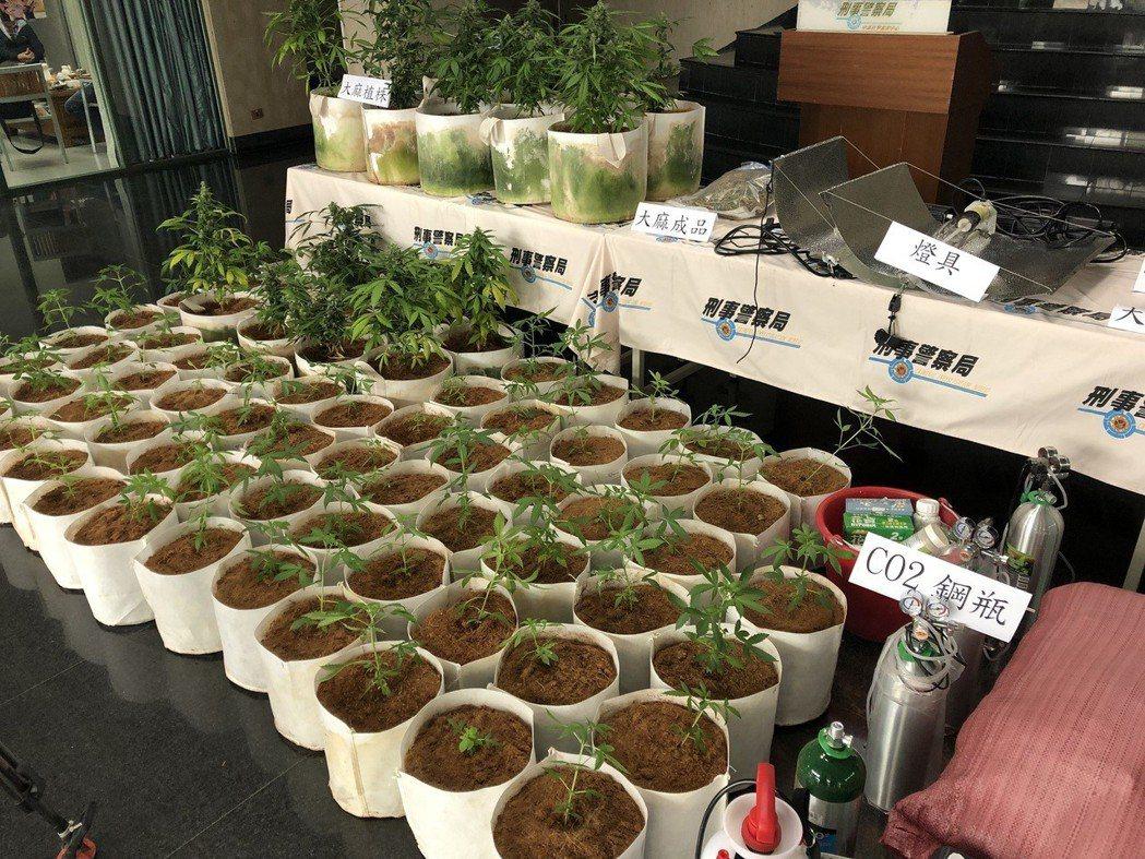 犯罪份子以比特幣自海外購買大麻種子,自行栽種,遭查獲市價高達3千多萬元。 圖/聯...