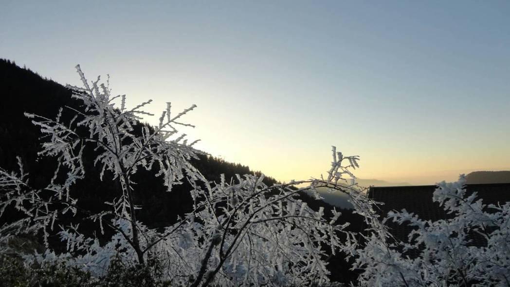 海拔2千公尺的太平山國家森林遊樂區,今天持續低溫,木棧道結冰,霧淞及結冰範圍比昨...