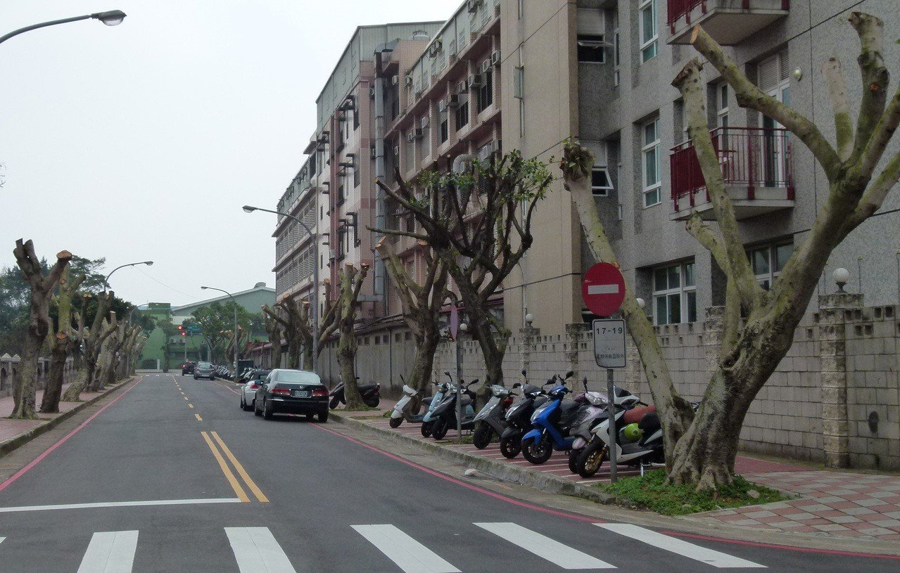 西園路57巷行道樹剪修引發觀感問題,公所表示未來會格外注意。記者鄭國樑/攝影