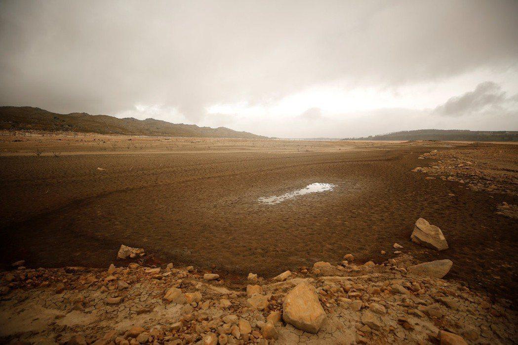 開普敦最大的提瓦特庫水庫幾乎見底。(路透)