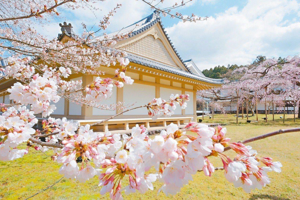 宇治的醍醐寺又被稱為日本最美麗的寺院。 圖/有行旅提供