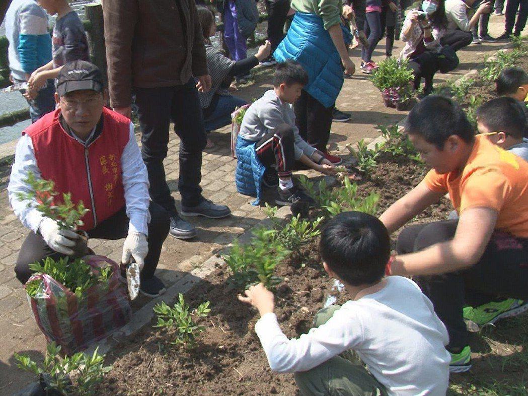 萬里區長謝文祥(左一)與大坪國小的學童在中幅親水公園一同種下杜鵑花,不僅如此更邀...