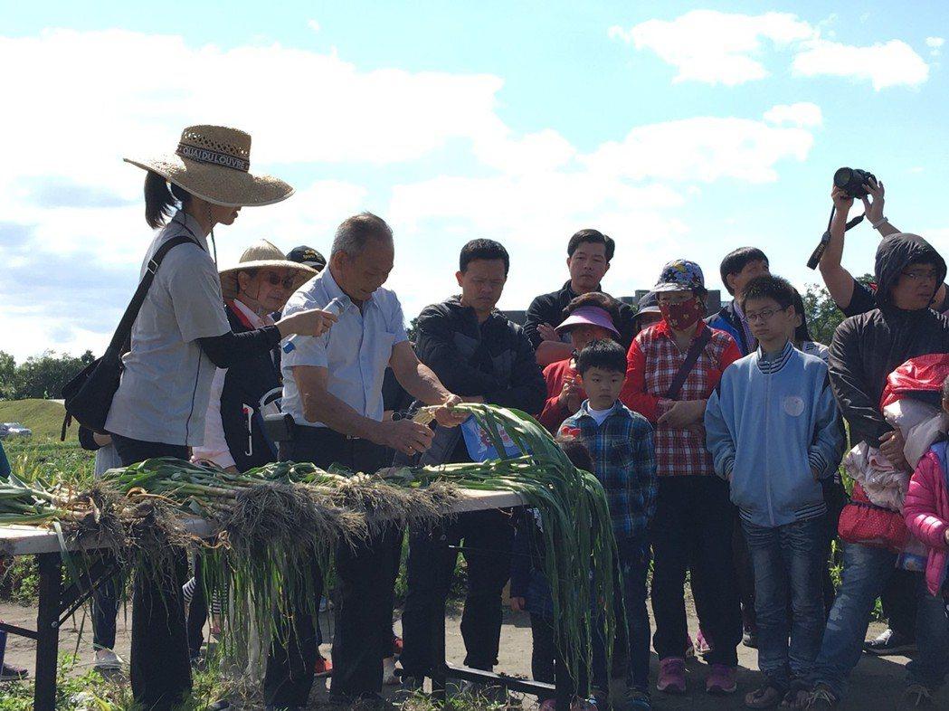 宜蘭縣五結鄉鄰近蘭陽溪口的錦草村,每年靠著颱風季過後的沃土養大50公頃青蒜,昨天...
