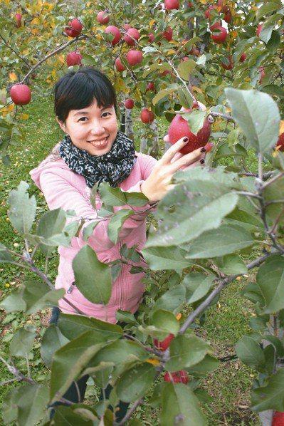 弘前蘋果公園。 記者薛佩玉/攝影