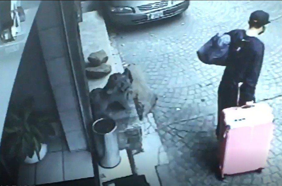 陳疑將女友大體裝入粉色行李箱中,搭捷運至竹圍捷運站棄屍。 記者林孟潔/翻攝