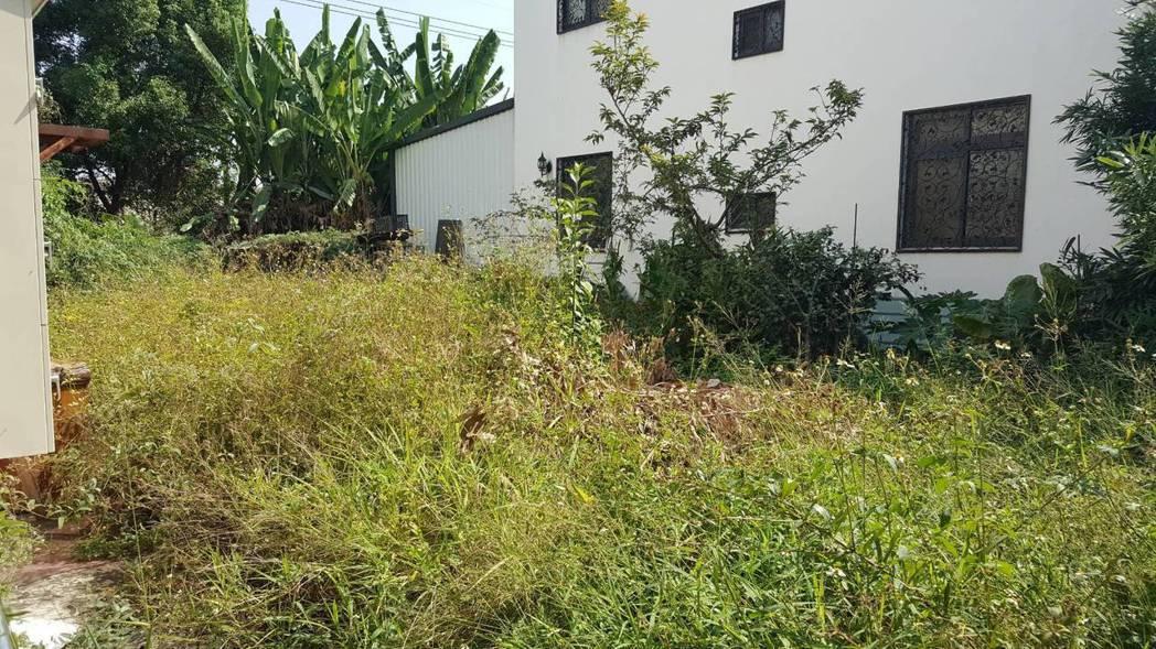台中市警局警犬隊址原為溪尾駐在所,建築物周圍原雜草叢生,現已整地改鋪草皮;圖為改...
