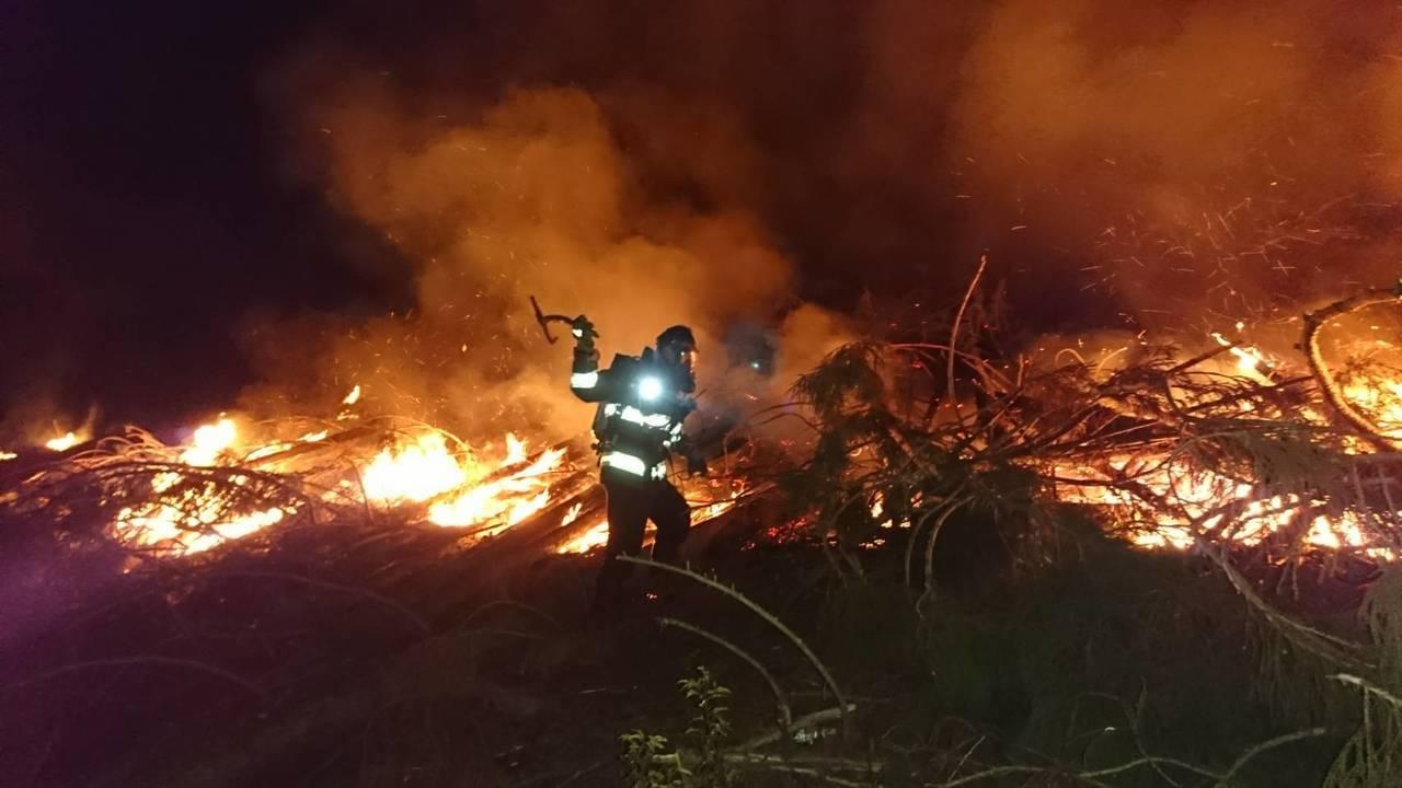 這起火警簡直像是「山林大火」,火勢相當驚人,還好及時撲滅,沒有擴大延燒。圖/消防...
