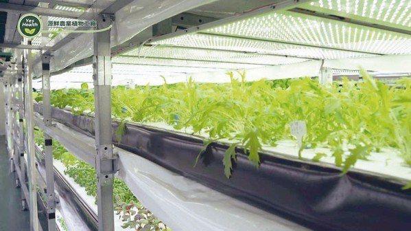 源鮮智慧農場開發室內垂直種植技術。 源鮮智慧農場/提供