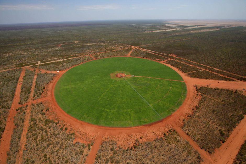 布魯斯・張的灌溉系統營造出綠草地。取自澳洲廣播公司網站,西澳省政府提供