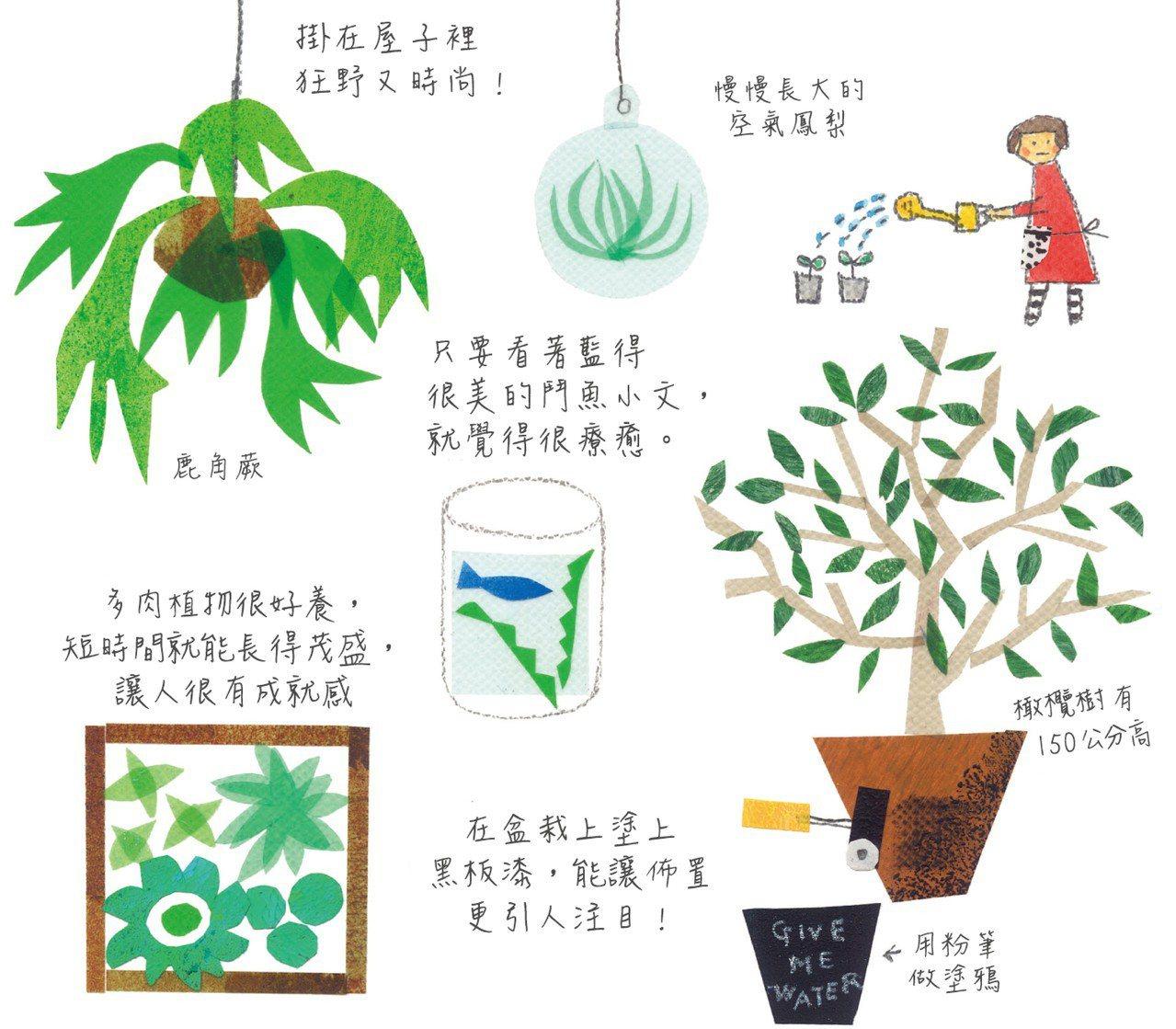 圖/堀川波繪,遠流出版提供