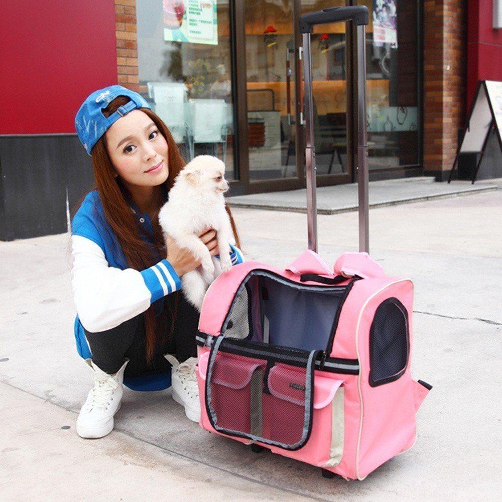 momo購物網即日起推出線上春季寵物展,圖為LOHAS DAY多功能寵物旅行拉桿...