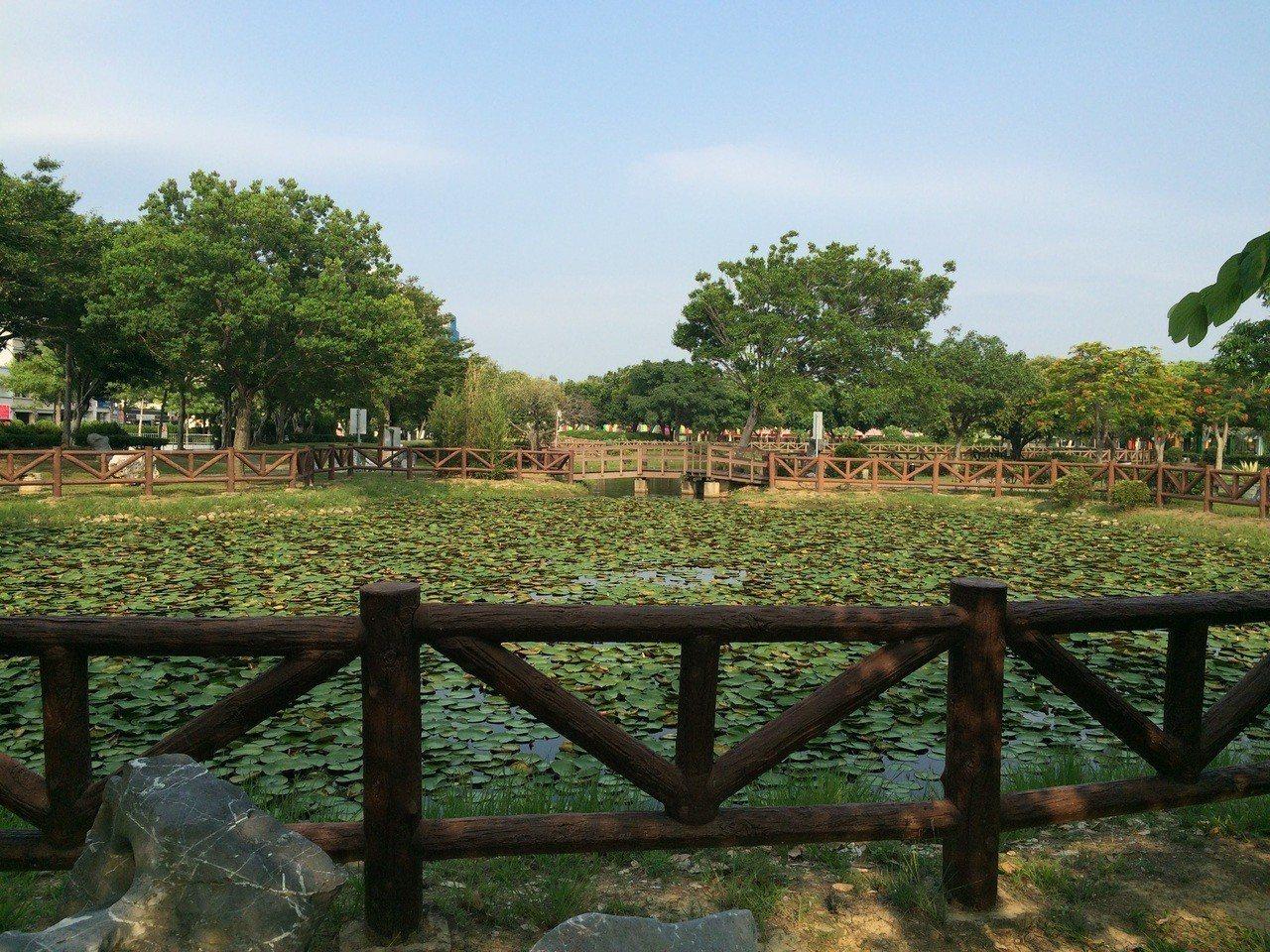 竹南頭份運動公園蓮池將設計石階草地及涼亭供民眾休憩。圖/苗栗縣政府提供
