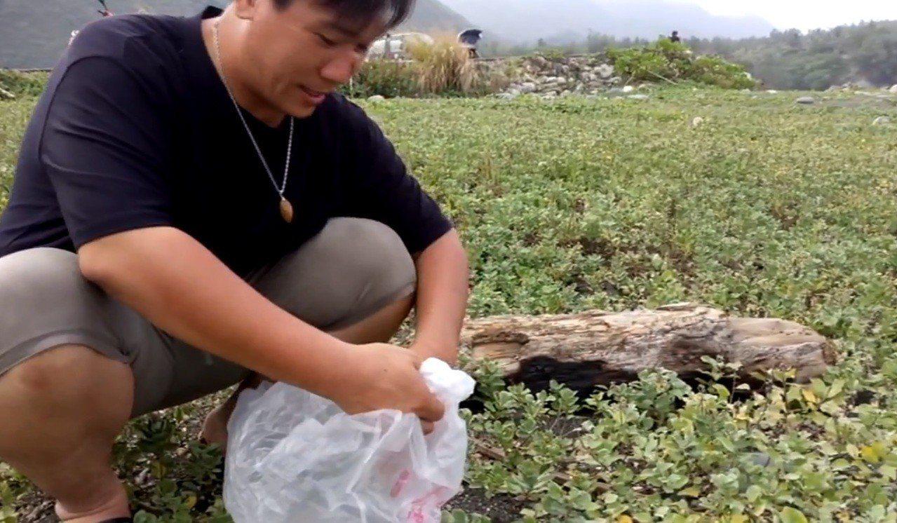 許譽騰說,去年底到台南北門彎腰採蔓荊子,一天大約只採2公斤,回來後還必須曬乾、去...