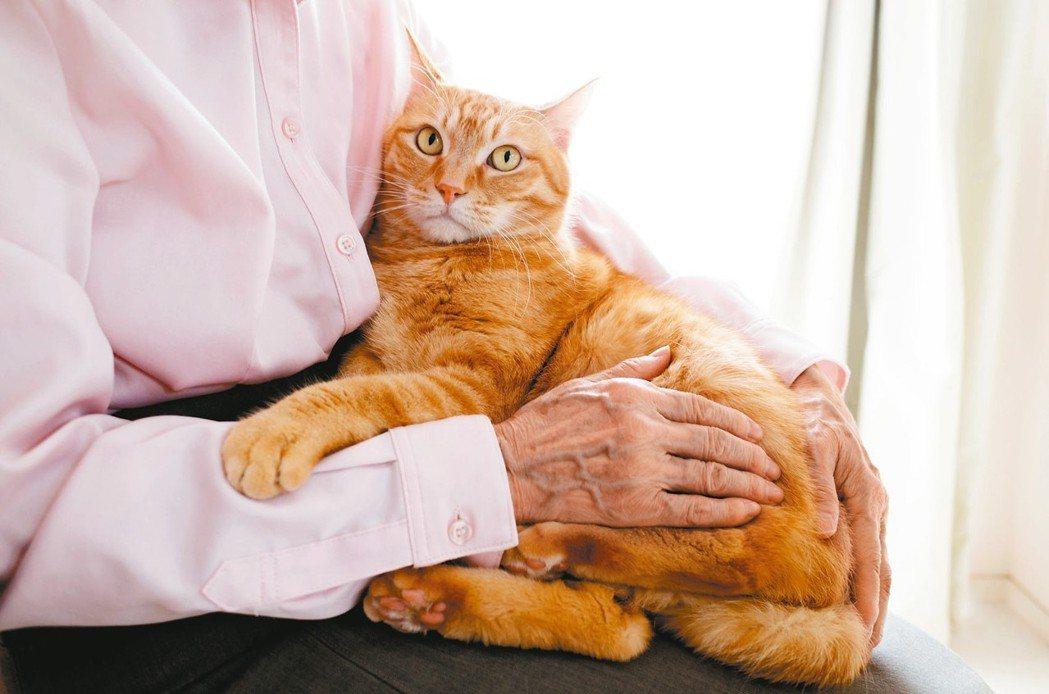 研究指出,飼養寵物對於長輩而言,可以增加快樂感,更可以幫助社交活動,有研究顯示可...