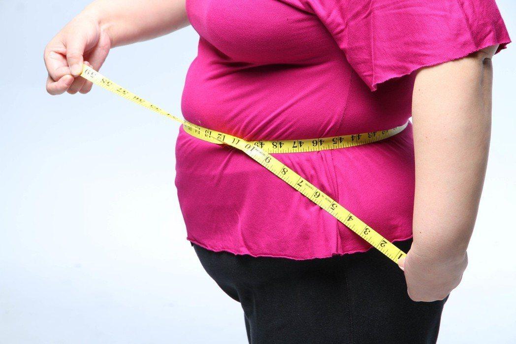 體脂肪並非絕對有害。聯合報系資料照/記者陳俊吉攝影