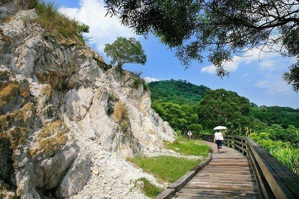 貴子坑露營場地是天然的地質教室。 (攝影/楊智仁)