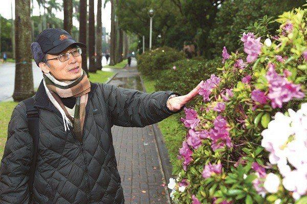張育森分享,杜鵑花最上面的花瓣上有像「血跡」的斑點,其實是吸引昆蟲 的識別標誌。...