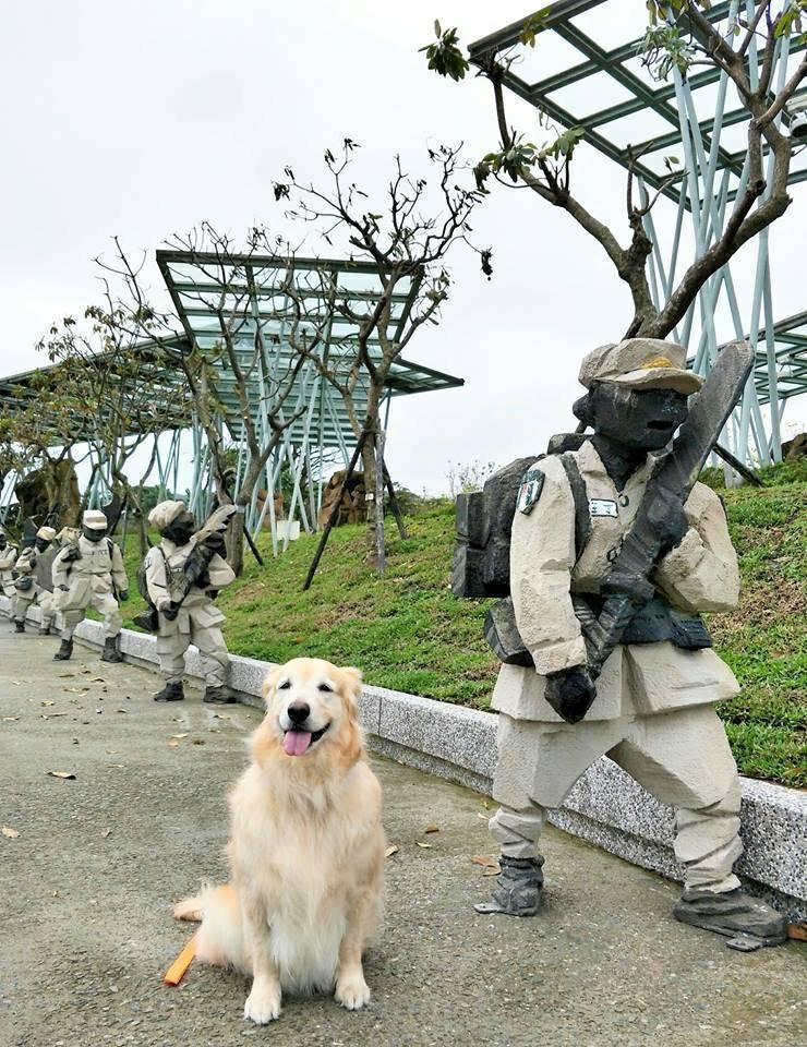 朱銘美術館3月24日在舉辦「禮貌狗狗舞太極」活動,邀請200隻狗狗來逛美術館,當...