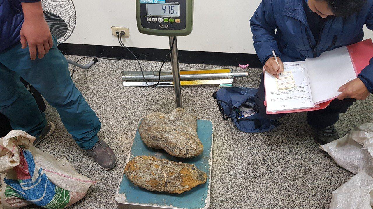林、詹兩嫌為竊取破壞盤結在石頭上的樹根,挖出龜甲石23顆,市價約3萬餘元。圖/保...