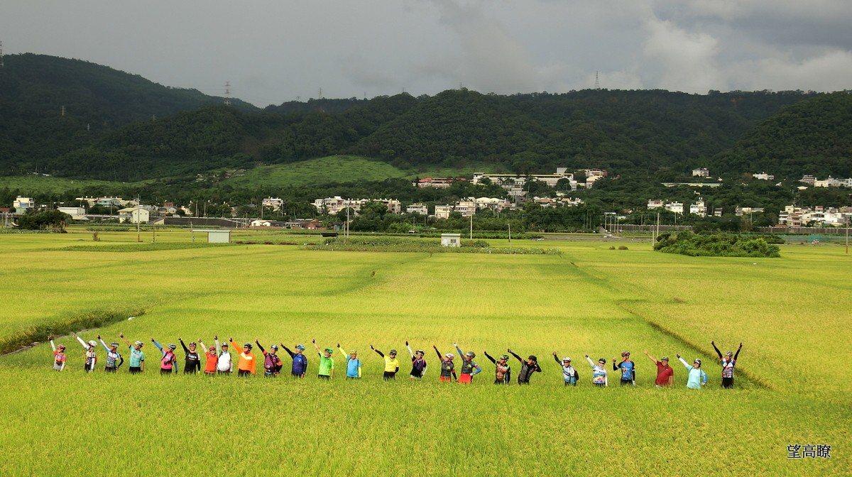彰化不落191,帶你走訪稻穗最美的時節。圖/台灣樂活自行車協會提供