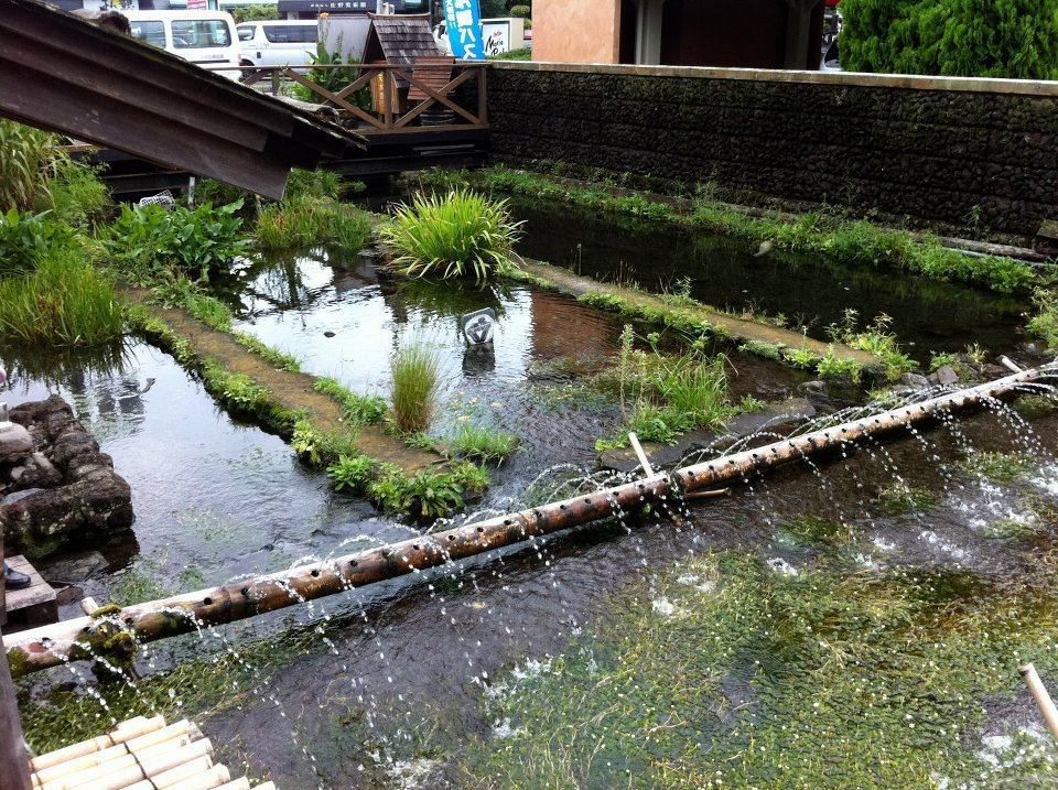 三島市的觀光人次從源兵衛川整治前每年約3萬人,十幾年後成長到45萬人。 圖/取自グラウンドワーク三島