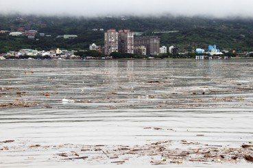 曾國欣/臺灣的水資源污染,限塑才是解方?