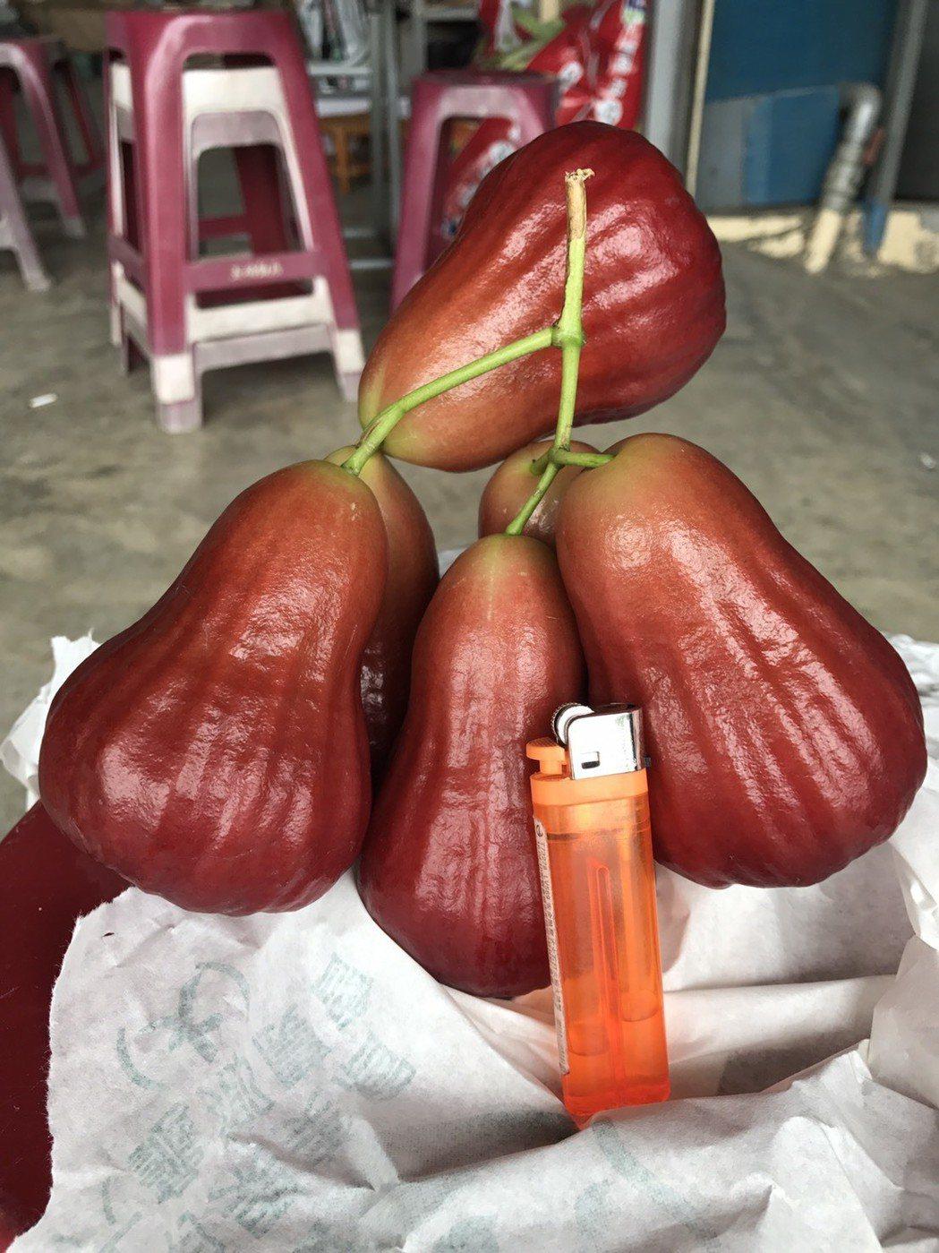 「黑糖芭比」色澤紅潤,顏色越深越好吃,價格不便宜。記者徐白櫻/翻攝